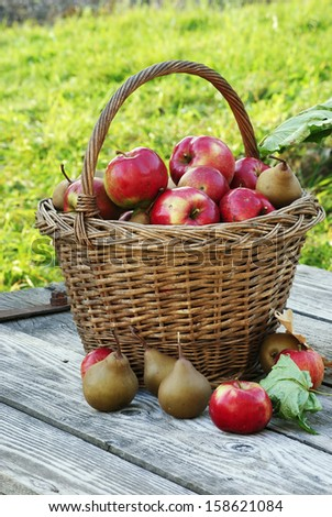 a basket full of apples and pears