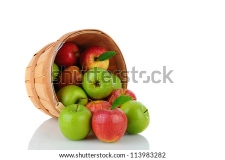 A basket of fresh picked Gala and Granny Smith Apples on its side with fruit spilling out. Horizontal format over a white background with reflection.