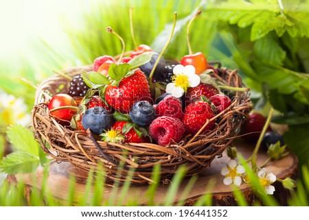 A basket of mixed summer berries