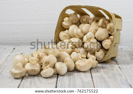 A basket of scattered white mushrooms. White mushrooms on a white background.