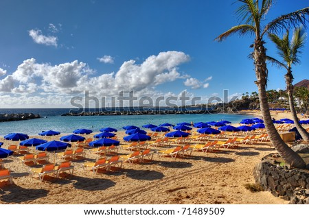 A beach at Playa Blanca, Lanzarote, in the Spanish Canary Islands, with sunbeds, parasols and a Palm