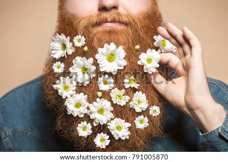 A bearded man with a decorated beard for the Spring holiday. Flower in the beard.