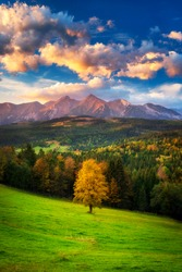 A beautiful autumn evening on a pasture under rocky mountains with a wild forest, a beautiful yellow tree in the middle of a meadow and a colorful dramatic sky. High tatras NP, Poland, Slovakia