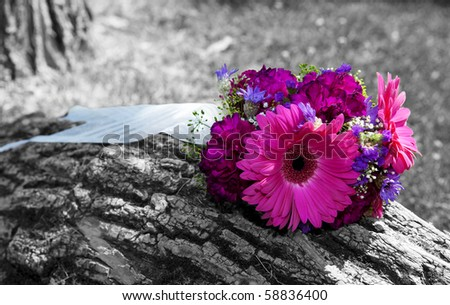 stock photo A beautiful bridal bouquet left sitting on a tree trunk