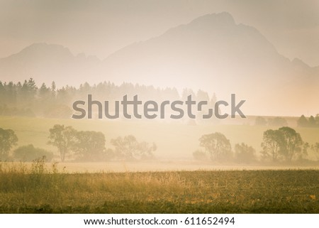 A beautiful, colorful, abstract mountain landscape with trees with a hot summer haze in warm green tonality. Decorative, artistic look.