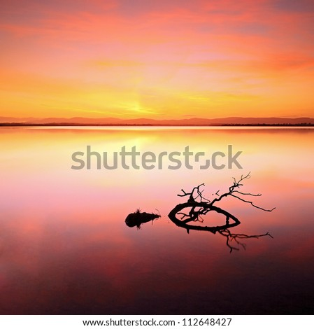 A beautiful colorful Sunset with a tree branch in the water. Shot at Loch Leven, Perthshire and Kinross