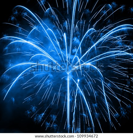A beautiful fireworks in the night sky