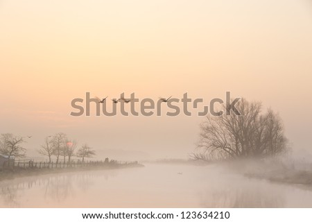 A beautiful foggy morning in early spring