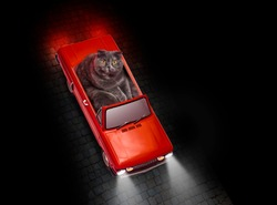 A beautiful funny image of a cat driving a red vintage roadster car with headlights on a cobblestone street in the night, view from above