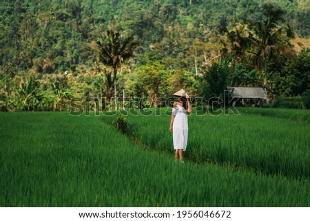 A beautiful girl walks on rice terraces on the island of Bali. A beautiful girl in a white dress and a conical hat walks through green rice fields. Copy space.  A woman in a Balinese conical hat
