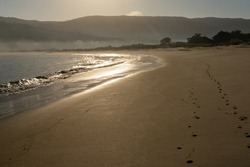 A beautiful golden sandy beach with glistening waves and tracks in the sand