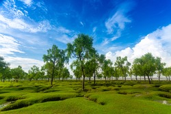 A beautiful greenish view of the beach and sky of Guliakhali beach, Muradpur, Sitakunda, Chittagong, Bangladesh. In the rainy season The most popular tourist spot in Bangladesh.