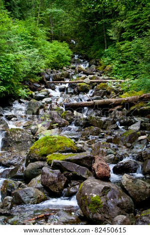 A beautiful high mountain stream in the Mt. Baker-Snoqualmie National Forest near North Bend, Washington.