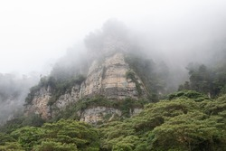 A beautiful high white cliff in middle of a dense fog with green trees at colombian Chicaque natural park