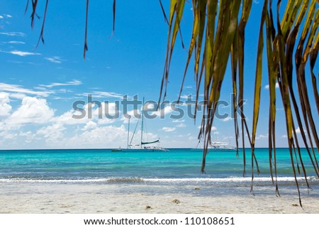 A beautiful image of caribbean sea - Nature