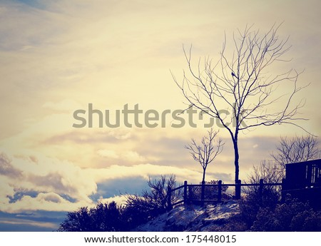 a beautiful landscape done with ...