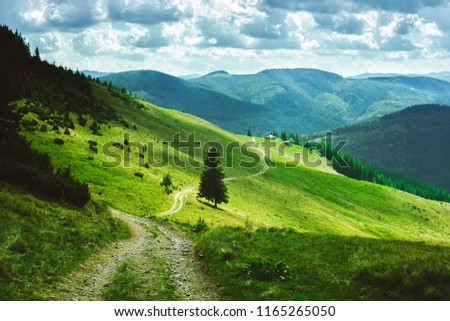 a beautiful landscape of summer mountains, green slopes of the Ukrainian and Romanian Carpathians, a road on the slope to the house on the slope #1165265050