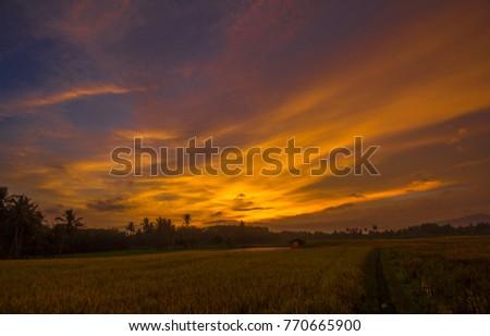 a beautiful landscape of sunshine #770665900