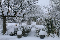 A beautiful landscape Winter snow scene of an English country garden covered in frozen icy weather white layer cover on pear espalier tree lavender bushes plant pots path under rose arch across lawn
