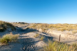 A beautiful landscape with sand dunes of Norderney Island, Germany