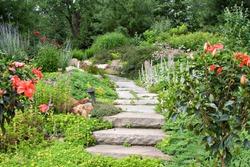 A beautiful nature path through a garden.