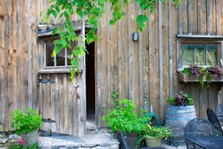 A beautiful old barn with beautiful foliage in Prince Edward County wine region