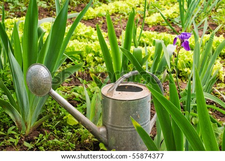A beautiful old watering pot Stock Photo