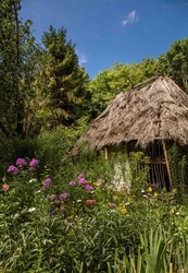 A beautiful old wooden cottage with thatched roof set in a beautiful summer herbal garden. From Ukraine