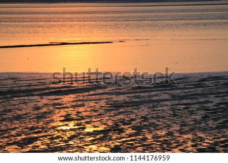Stock Photo a beautiful orange sunset over the sandy mudflats with low tide along the sea at a summer evening