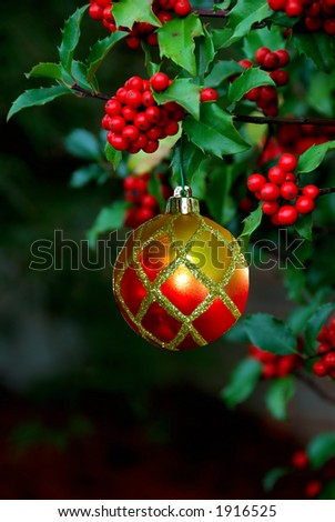A beautiful ornament hangs from a holly branch with a black background and  space for copy. - stock photo
