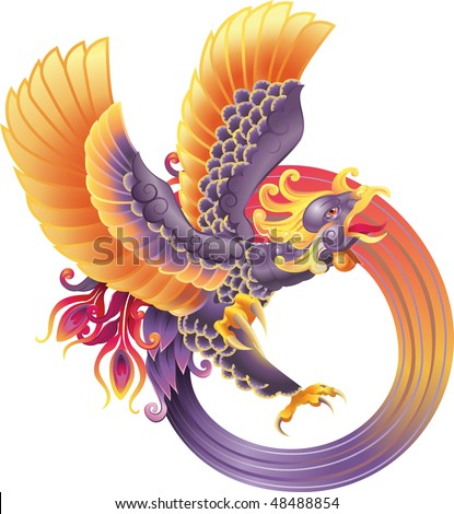 A beautiful phoenix illustration