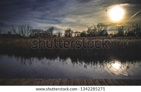 A beautiful, picturesque sunset on the shore of the lake. A calming song of birds and gentle breeze in the Polish countryside. Zdjęcia stock ©