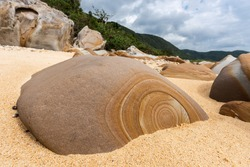 A beautiful rock with a circular pattern on its surface that is typical of the Haemita beach, surrounded by beach sand. Iriomote Island.