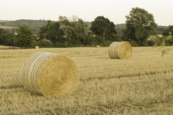 A beautiful shot of hay rolls in a dry grassland