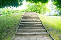 A beautiful shot of stone stairs in the park with green grass and trees