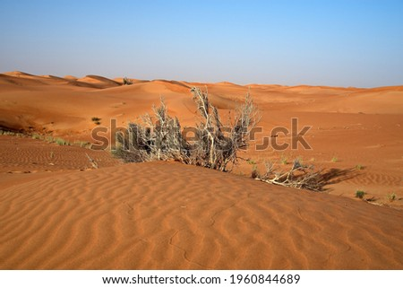 A beautiful shot of the pink rock desert under a clear sky in the United Arab Emirates Zdjęcia stock ©