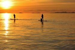 A beautiful silhouette of paddle boarders during sunset illumination of sky colored in orange and yellow