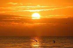 A Beautiful Sunrise On Sanibel Island Florida