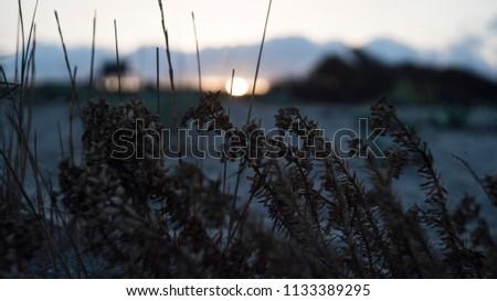 a beautiful sunset behind fields