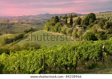 A beautiful sunset in the Tuscan country (Chianti)