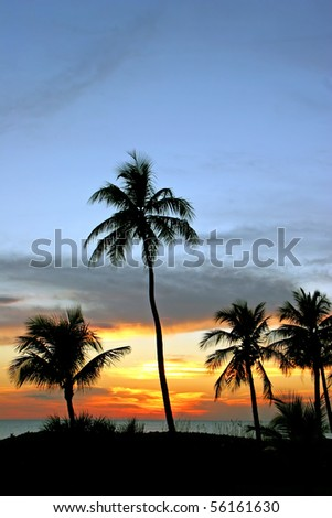 a beautiful sunset on Sanibel Island Florida