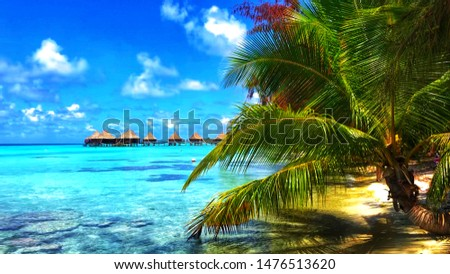 A beautiful view from far of bungalows on Ranghiroa atoll, French Polynesia, in the shade of a palm trees forest, surrounded by coral reefs and turquoise waters, perfect for snorkel.  #1476513620