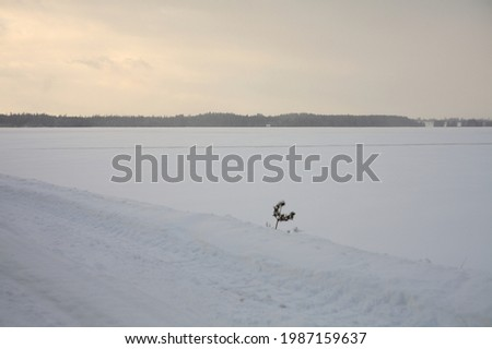 A beautiful view of a snowfield at sunrise Stock photo ©