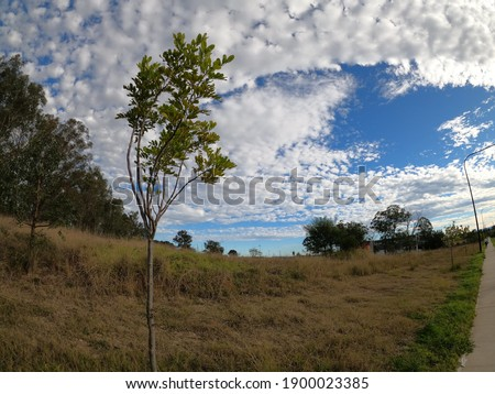 A beautiful view of greenery under a cloudy sky in Schofield, New South Wales, Australia Stockfoto ©
