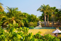 A beautiful view of palms at a waterpark in Dubai, United Arab Emirates