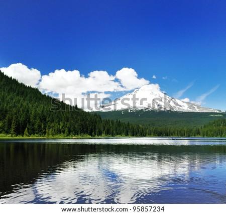 A Beautiful View OF Trillium Lake