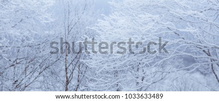 A beautiful winter landscape with snowy trees and mountains in a distance in central Norway. #1033633489