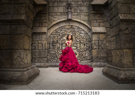 A beautiful woman, a queen in a red luxurious dress, stands on the background of a medieval, Gothic emblem with an arch, silver caron with crystals. The Princess at the Castle