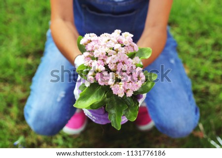 A beautiful woman in her garden, plant colorful flowers to give color. Concept of: gardening, spring, bio. #1131776186
