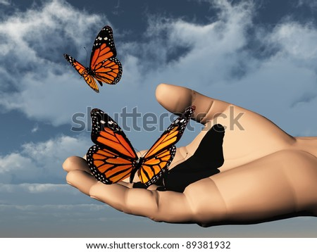 a beautifull colored butterfly in the hand